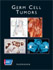 Germ Cell Tumors, American Cancer Society Atlas of Clinical Oncology