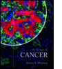 The Biology of Cancer (paper)
