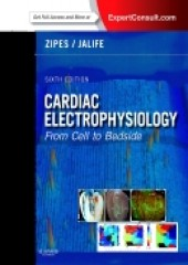 Cardiac Electrophysiology: From Cell to Bedside, 6/e