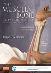 The Muscle and Bone Palpation Manual with Trigger Points, Referral Patterns and Stretching-2판