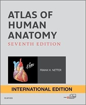 Atlas of Human Anatomy (IE),7판