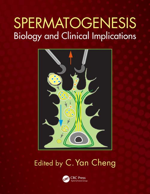 Spermatogenesis: Biology and Clinical Implications